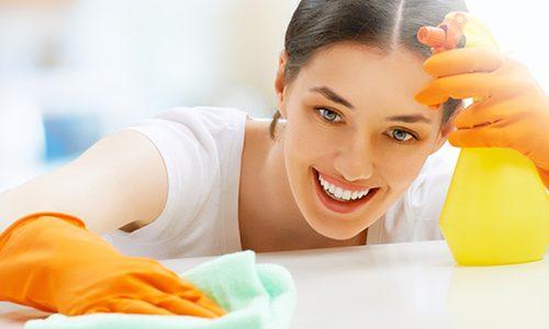 Domestic Cleaners in Cheltenham